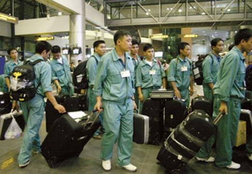 Sang Nhật để làm việc và có được nguồn thu nhập đáng mơ ước?(Ảnh: Internet)