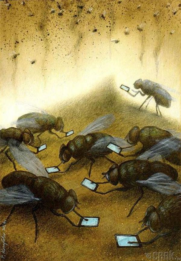 Thời đại mà ruồi nhặng chỉ nhìn thế giới qua màn hình ảo một cách mơ hồ.(Ảnh: Internet)