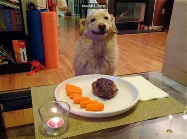 Chụp cho 1 tấm ngồi ăn sang chảnh coi nào! (Ảnh: Internet)