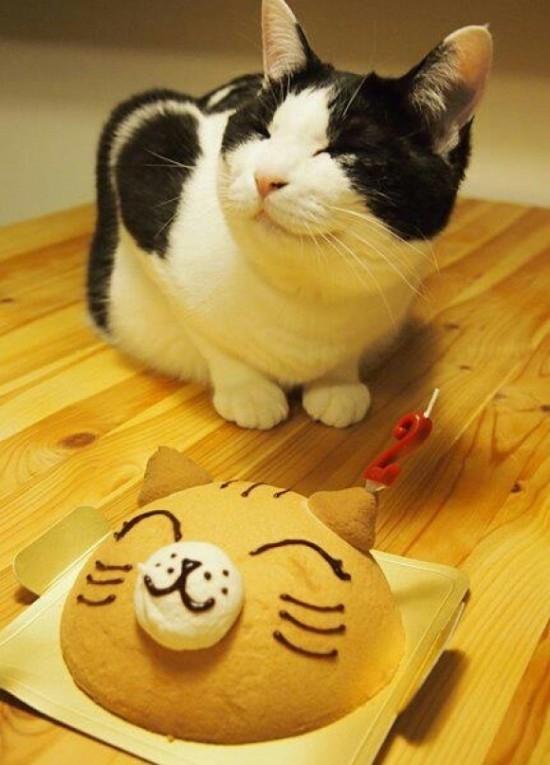 """""""Hihi, mọi người thấy em và cái bánh này ai xinh hơn? Em mới là 'hàng xịn"""" đó nha"""".(Ảnh: Internet)"""