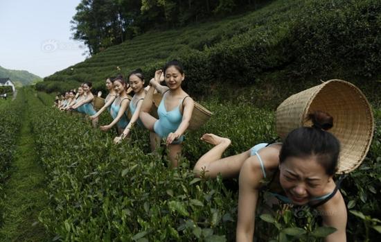 Hiện danh tính của các cô gái chưa được tiết lộ. Sina cho rằng, đó có thể là một nhóm nữ sinh của một trường nghệ thuật hoặc thành viên của một đoàn nghệ thuật nào đó.