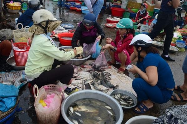 Trái ngược với tình trạng ế khách tại các sạp cá biển, những sạp bán cá đồng, sông lại đông khách. Thông tin về cá biển chết khiến người dân tập trung vào tiêu thụ các loại nước ngọt.