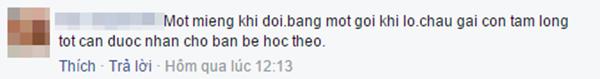 Bình luận của cư dân mạng. (Ảnh: Ảnh chụp màn hình từ FBNV)