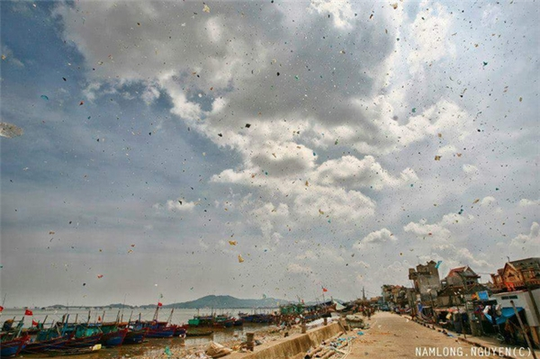 Hình ảnh gió cuốn rác thải từ bãi biển trở vào đất liền.