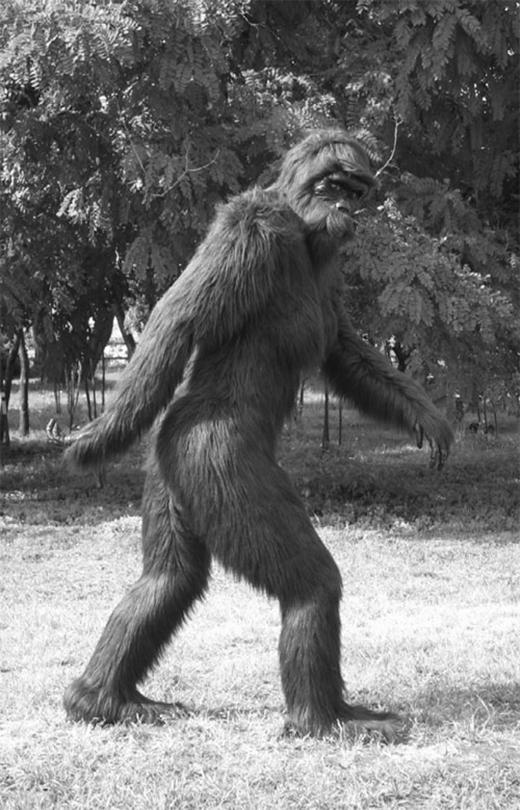 Hình ảnh quái vật Bigfoot. (Ảnh: Internet)
