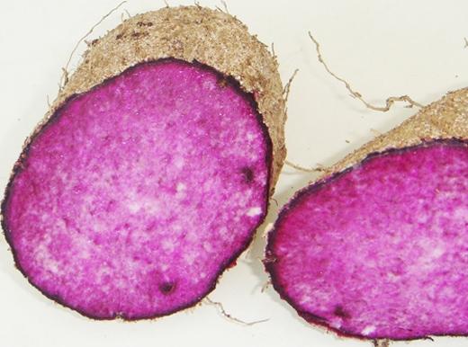 Thường xuyên ăn khoai mỡ có thể tăng cường chức năng giải độc cho thận. (Ảnh: Internet)
