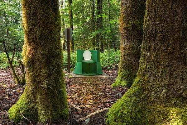 """Thêm một nhà vệ sinh """"xanh"""" ở giữa rừng tại British Columbia, Canada."""