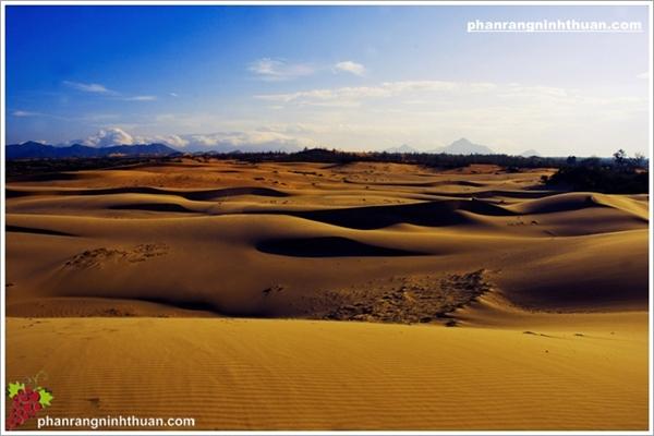 Thời khắc đẹp nhất để chiêm ngưỡng đồi cát là khi bình minh lên.(Ảnh: Internet)