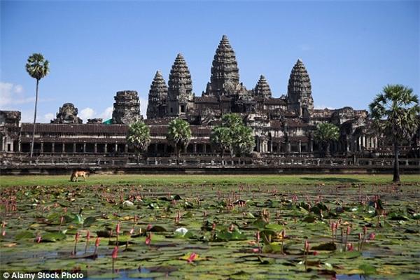 Thay vì đi bộ hay tuk tuk, nhiều du khách chọn voi làm phương tiện đi lại trong khu đền Angkor Wat