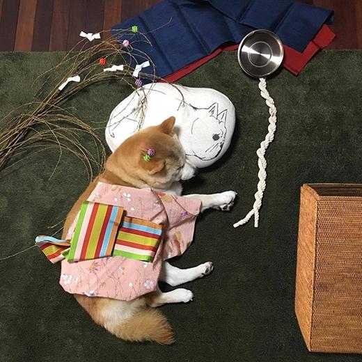 Mặc kimono cũng xinh không kém ai đâu nhé. (Ảnh: fujisan99)