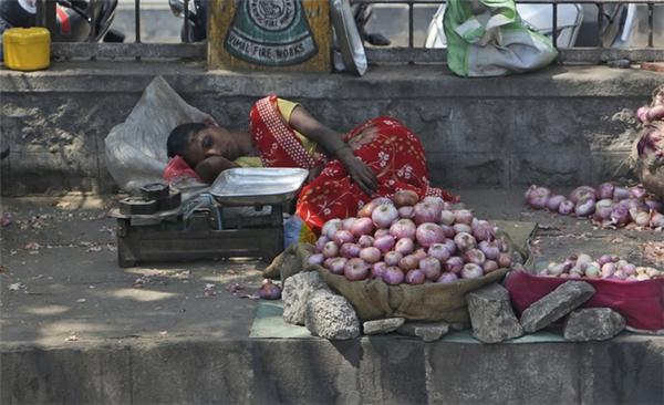 Nắng nóng như thiêu đốt tại Ấn Độ khiến người dân vật vã.