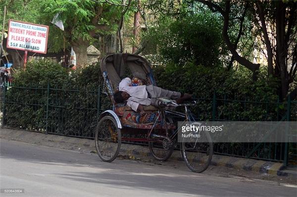 Người đàn ông tranh thủ nghỉ ngơi sau những giờ làm việc nặng nhọc dưới thời tiết nắng nóng khắc nghiệt ở Allahabad, Ấn Độ.