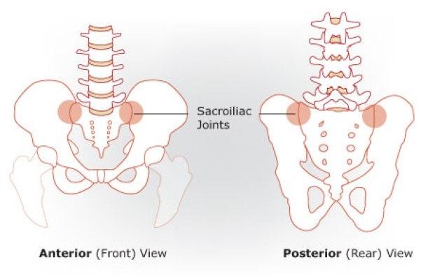 Điểm khuyết venus ở nữ là đoạn nối giữa xương chậu và phần bên trên của cơ thể.