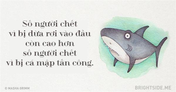Ai bảo đi tắm biển dễ bị cá mập cắn chứ? Cá mập cũng có... lòng tự trọng của nó nhé. (Ảnh: Bright Side)