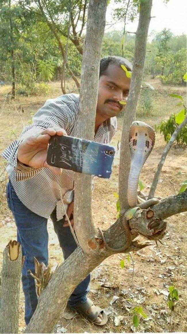 Người đàn ông này không hề biết sợ hãi mà còn selfie với rắn. (Ảnh: Internet)
