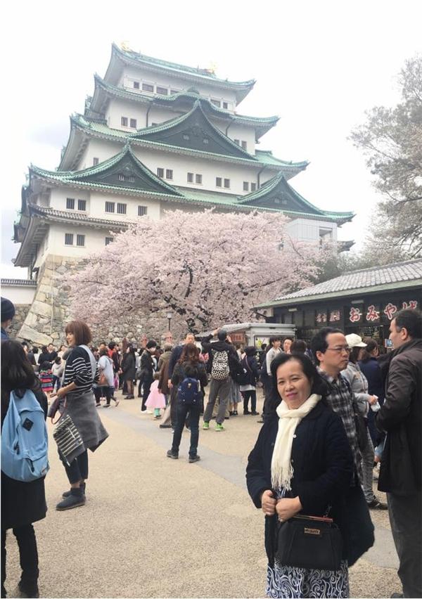 Theo chân cô nàng xinh đẹp ngắm hoa anh đào từ Nhật đến Hàn