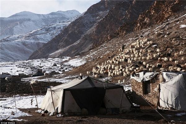 Nhiếp ảnh gia Cat Vinton đã dành hơn 2 tháng sống với một gia đình người Chang Tang-Pa ở biên giới Tây Tạng - Ấn Độ. Cô ngủ trong lều làm từ da trâu yak cùng họ.