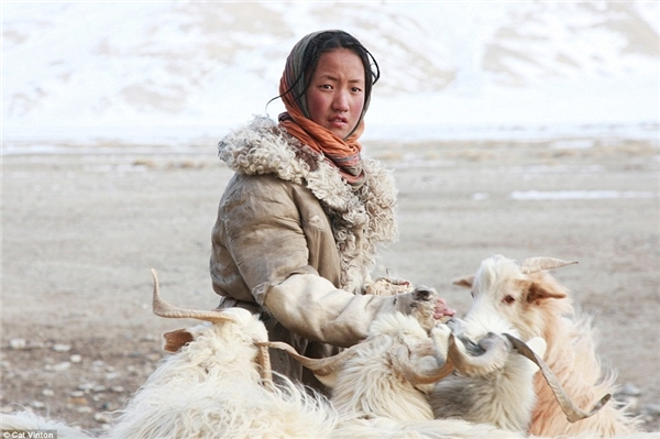Sonam 12 tuổi. Cô bé có nhiệm vụ đảm bảo đàn dê của gia đình có đủ thức ăn - một điều khó khăn khi phần lớn đất đai nằm dưới lớp tuyết dày.