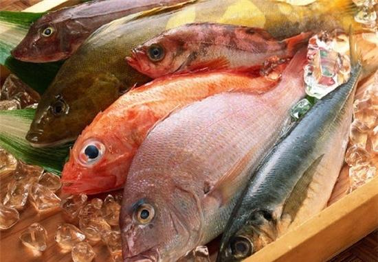 Cách phân biệt cá biển tươi và cá đã bị nhiễm độc