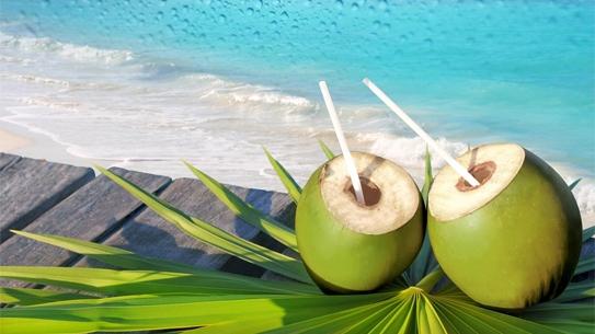 Dừa:Nước cốt dừa là một bài thuốc tự nhiên và đơn giản để trị loét lưỡi. Nước cốt dừa có thể dùng để súc miệng. Cách này nên được thực hiện ít nhất 3 lần mỗi ngày.