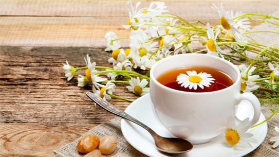 Trà hoa cúc:Hoa cúc là một vị thuốc đã được sử dụng từ rất lâu. Hoa cúc có tính kháng khuẩn và chống viêm rất có lợi trong điều trị loét miệng lưỡi. Trà hoa cúc có tác dụng làm dịu vết rộp hay vết loét lưỡi. Bạn nên uống trà hoa cúc 3-4 ngày để giảm các triệu chứng loét.