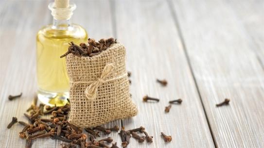 Dầu đinh hương:Đinh hương có khả năng làm giảm đau miệng và là bài thuốc hiệu quả chữa loét miệng. Lấy ½ thìa dầu oliu trộn với 5 giọt dầu đinh hương. Trộn hai loại dầu này trong bát và ngâm một miếng bông gòn trong hỗn hợp này. Đắp miếng bông này trực tiếp lên vết loét khoảng 10 phút.