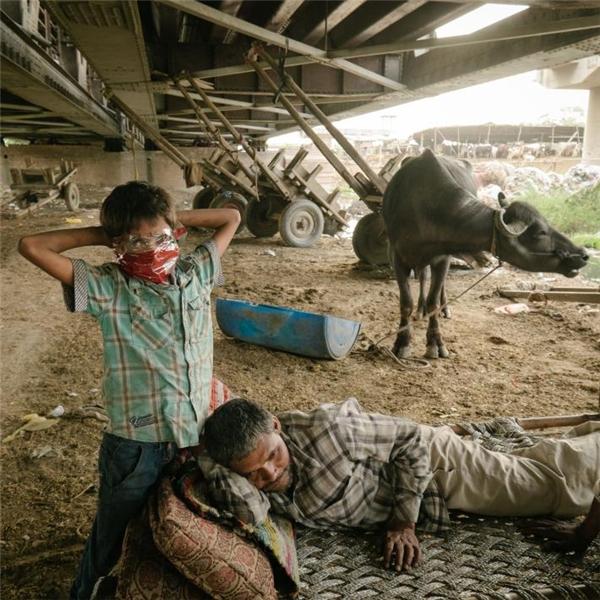 Hai bố con này sống bên dưới một cây cầu vượt, mưu sinh bằng cách nhặt đồng nát đem bán.