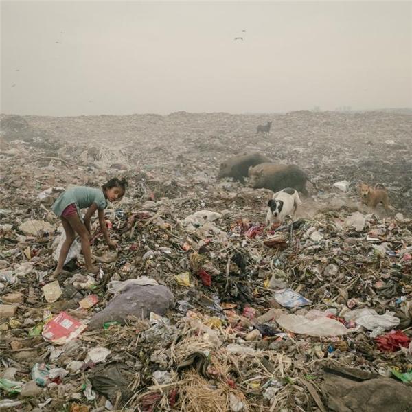Cô bé này đang kiếm đồ đồng nát tại bãi rác Bhalswa, kéo dài cả hàng cây số.