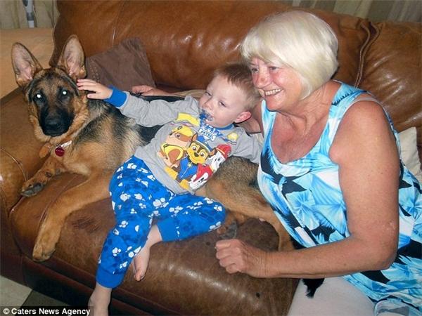 Đứa cháu trai 2 tuổi Kayden và chú chó cưng Karma của bà Iris thường xuyên ngủ trưa cùng nhau và là một đôi bạn vô cùng thân thiết. (Ảnh: Internet)