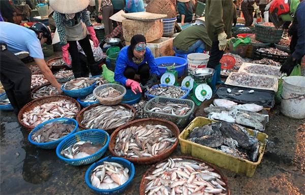 Đủ loại hải sản, tha hồ lựa chọn.(Ảnh: Internet)