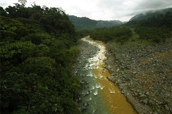 Đây chỉ là 1 nhánh của dòng sông bẩn ở công viên quốc gia Braulio Carrillo tại San José, Costa Rica. Dòng sông chuyển sang màu vàng nâu khi tro khoáng tuôn ra từ ngọn núi lửa đang hoạt động Irazu. Dù đã được lọc sạch bởi rừng mưa nhiệt đới thế nhưng dòng nước lại bị hòa lẫn với nguồn nước bẩn. Bức ảnh được chụp vào ngày 6/6/2012.