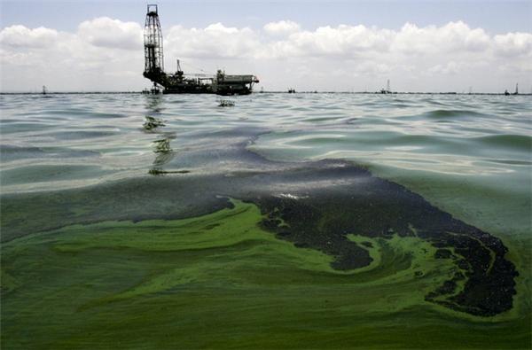 Dầu lênh láng gần khu sản xuất dầu tại hồ Maracaibo, cạnh ngôi làng ven biển Barranquitas, Venezuela vào 15/8/2011. Do các ống dẫn và máy bơm dầu đã quá cũ kỹ mà các vụ rò rỉ đã xảy ra và gây thiệt hại nghiêm trọng cho khu vực này.