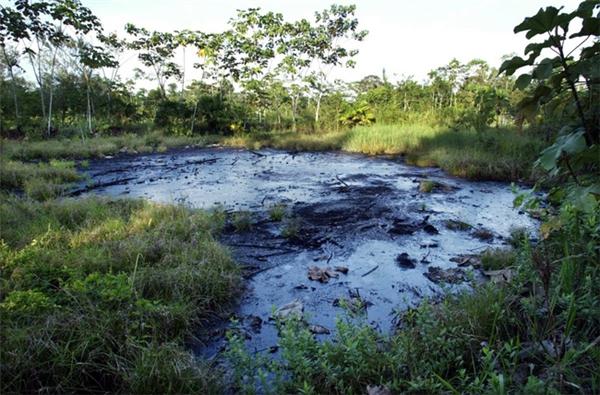 Hình ảnh một hồ chứa đầy dầu thô, hậu quả của các hoạt động khai thác dầu nhiều năm trước đó. Bức ảnh được chụp tại Sacha, Ecuador vào ngày 21/10/2003.