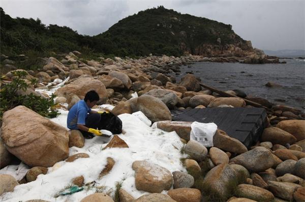 Một tình nguyện viên đang dọn dẹp những hạt xốp bên bờ đảo Lamma, Hồng Kông vào ngày 5/8/2012. Hàng trăm triệu hạt xốp độc hại đã bị cuốn vào bờ khi các container chở hàng văng ra khỏi tàu trong trận bão tồi tệ ở Hồng Kông.