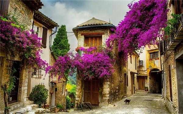 Một ngôi làng nhỏ ở Provence, Pháp (Ảnh: Internet)