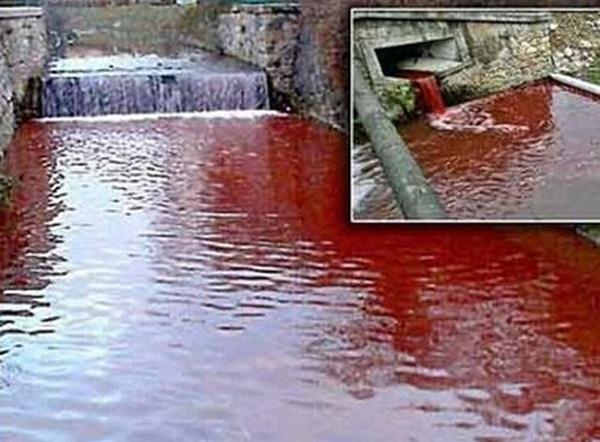 Bí ẩn về những dòng sông bất ngờ hóa đỏ như máu