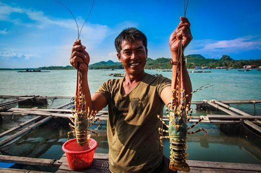 5 thiên đường ăn tôm hùm ở Việt Nam