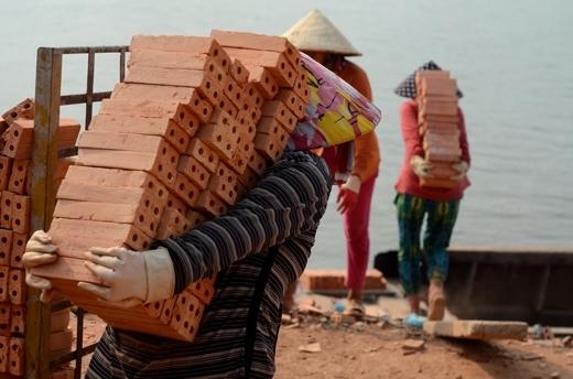 Hay tại huyện Chợ Mới (An Giang) cũng có hàng trăm người mẹ đang làm việc ở lò gạch. Công việc của họ là vác gạch thuê để kiếm sống qua ngày. Ảnh: Internet