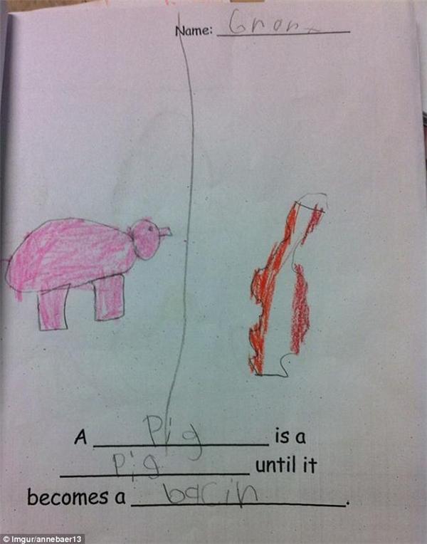 """""""Một con heo là một con heo cho đến khi nó trở thành ... món thịt xông khói"""". Một đáp án chuẩn không cần chỉnh! (Ảnh: Dailymail)"""