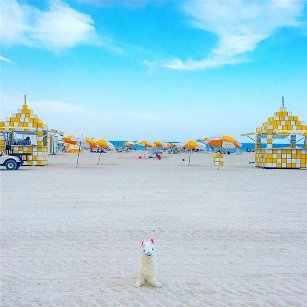 Một mình một cõi giữa bãi biển trời xanh cát trắng. (Ảnh: Eylul Savas)