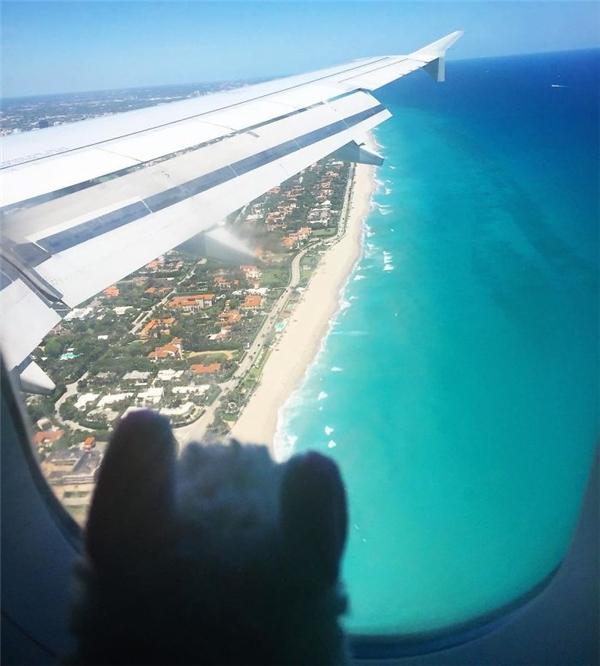 Xin chào, Bãi biển Cây cọ, mình đến đây! (Ảnh: Eylul Savas)