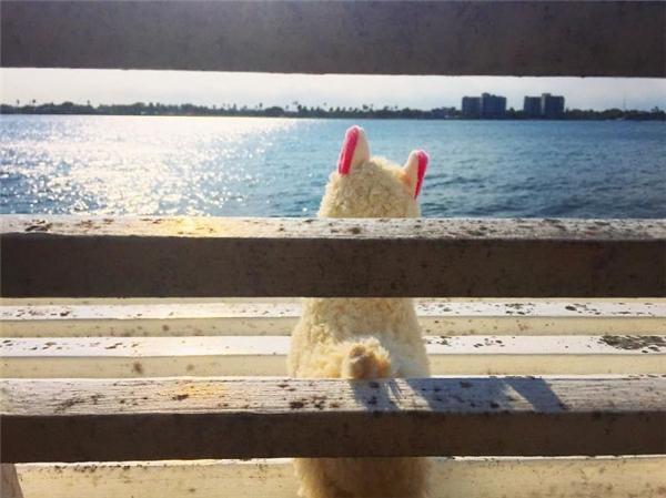 Sau khi đi chơi tưng bừng thì phải có những phút lắng lòng bên đại dương, chỉ có mình ta với ta. (Ảnh: Eylul Savas)
