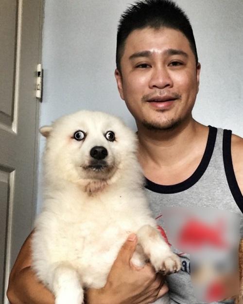 Bức ảnh gốc được dân mạng chỉnh sửa mắt cho chú cún trở nên hốt hoảng.