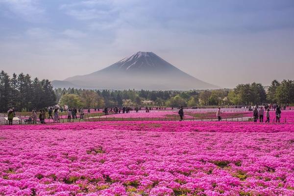 Vị trí đặc địa của công viên này thu hút rất đông khách du lịch.