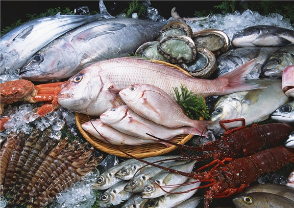 Du lịch Quảng Ninh - Đảo Cô Tô - Những bí quyết bỏ túi hữu ích khi vivu đảo Cô Tô xinh đẹp
