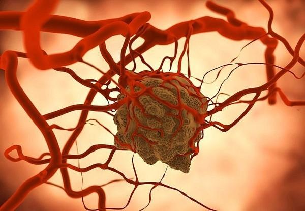 Đứng đầu nghiên cứu - giáo sư Kay Macleod thuộc ĐH Chicago cho hay, quá trình này được gọi là autophagy tế bào ung thư.