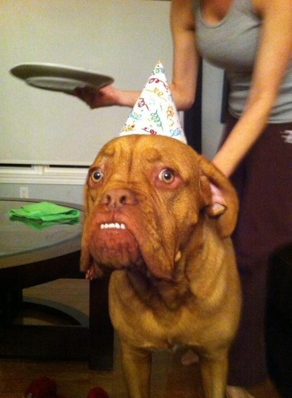 17. Đến cái tuổi này rồi thì sinh nhật chỉ khiến bạn cảm thấy ngày càng già nua mà thôi.