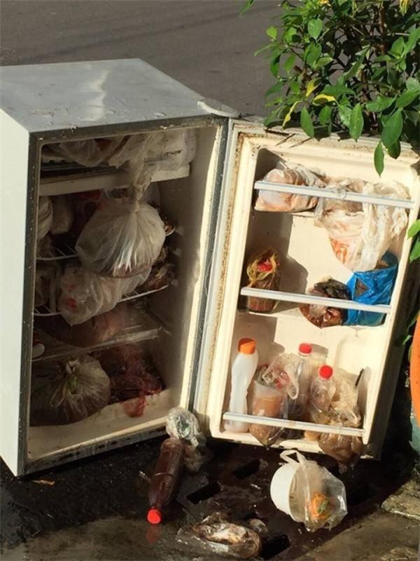 Trong chiếc tủ lạnh mini đầy ắp đồ ăn đã đến thời kỳ phân hủy này chắc ngay đến sâu bọ cũng chẳng thể sống nổi mất!