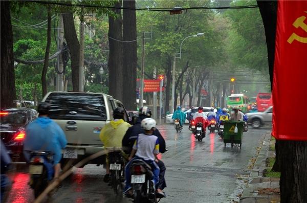 Ơn trời! Cơn mưa Sài Gòn vừa đến tưới mát tâm hồn