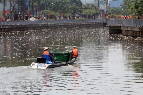 Xác cá nổi trắng mặt kênhNhiêu Lộc - Thị Nghè đoạn gần cầu Trần Quang Diệu - Ảnh: Q.Khải